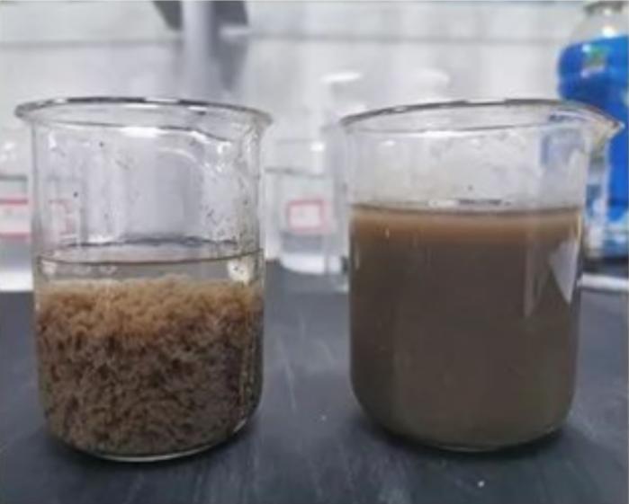 污水絮凝前后对比-东保絮凝剂